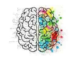 ¿Cómo estimular el cerebro para aprender un idioma?