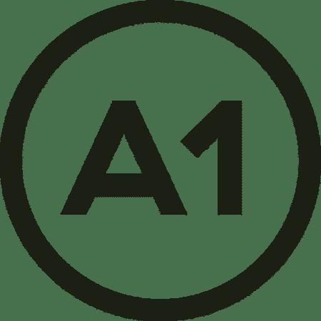 Clases de francés en Grupo Online Principiante