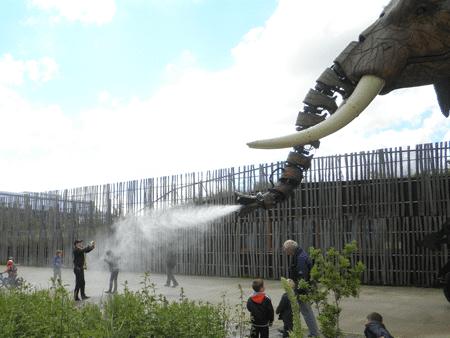 El lado inesperado de Francia: un paseo en elefante en el corazón de Nantes